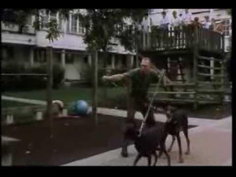 Mamas & Papas - Wiener Wunder - Muttertag