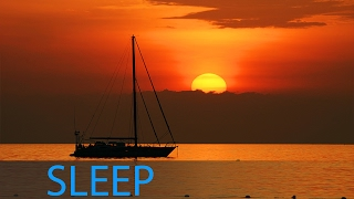 8 Hour Delta Waves Sleep Music: Relaxing Music, Calming Music, Soothing Music, Soft Music ☯1603