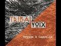 """Tribal Voix """"Voyage A Cappella"""" sortie de l'album tout bientôt"""