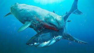 6 ศัตรูของฉลาม Megalodon...ที่อันตรายที่สุด!