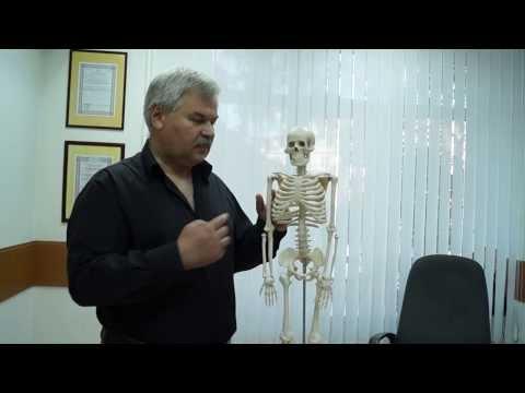 Alcuni antidolorifici dolore lancinante alla schiena