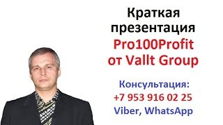 Краткая презентация Pro100Profit от Vallt Group