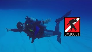 Pro Tips for Scuba Divers