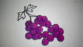 Anggur Mewarnai Untuk Bayi Free Video Search Site Findclip