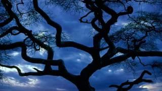 Serengeti Moon ~ Dan Fogelberg [CC] 59th
