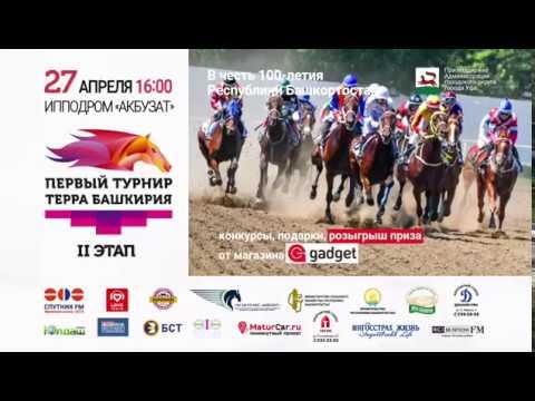 27 апреля - конный праздник