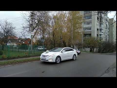 100+ АВТО на ВЕСІЛЛЯ (від 200 грн) + ПРИКРАШЕННЯ, відео 25