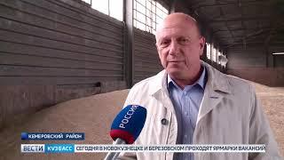 В Кузбассе продолжается уборочная кампания