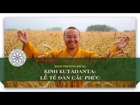 Kinh Trường bộ 05 – Kinh Kutadanta – Lễ tế đàn cầu phúc (01/06/2014) - Thích Nhật Từ