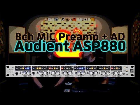 가성비 깡패 8채널 마이크프리앰프 Audient ASP880 리뷰