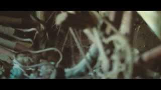 Видеосъемка на Nikon D3200 / Обработка видео в Adobe Photoshop / Тестовая  съемка.