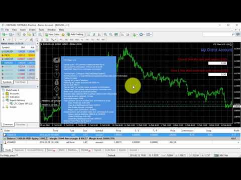 The newest indicator of binary options