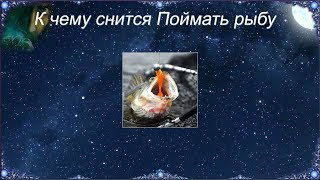 К чему снятся рыболовные снасти мужчинам