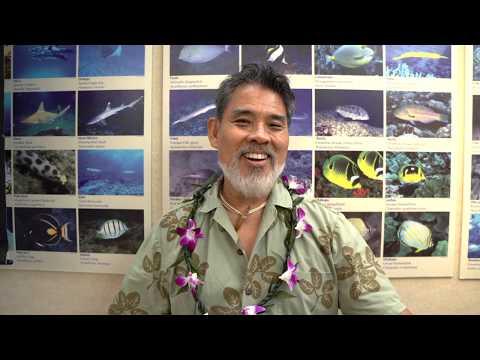 VOS Meet the Speaker: Sam Ohu Gon III