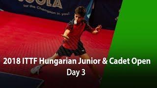 2018 Hungarian Junior & Cadet Open D3