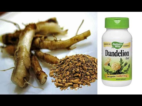 Video Dandelion Root  Cancer Cure At No Cost!|CANCER treatment with DANDELION Root TEA