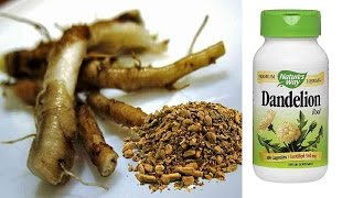 Dandelion Root  Cancer Cure At No Cost! CANCER treatment with DANDELION Root TEA