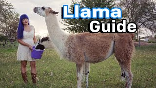 Llama Care + Farm Guard Guide
