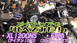 H-D CITY 西東京店名物企画 『比べてみた!』 スポーツスター XL1200NS(アイアン1200) & ソフテイル FXBB(ストリートボブ)