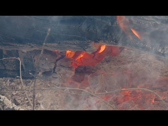 Иркутская область на первом месте по лесным пожарам
