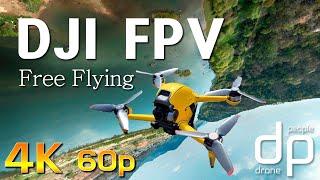 DJI FPV Free Flying for control settings