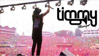 Timmy Trumpet Tomorrowland 2017 - Something Just Like This - The Chainsmokers & Coldplay