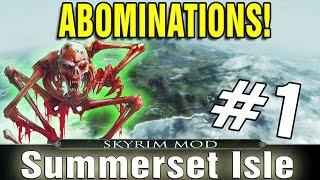Skyrim Summerset Isles Part 1 - ABOMINATION!!!
