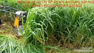 Máy cắt cỏ bò