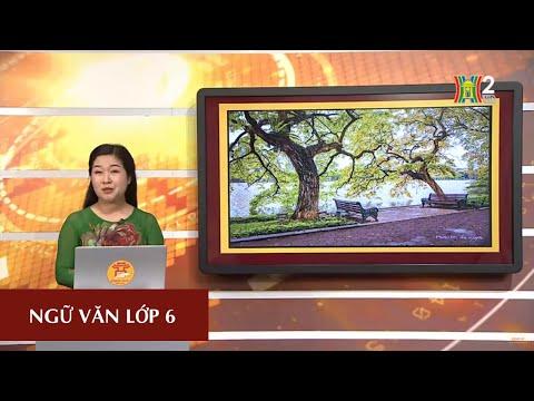 MÔN NGỮ VĂN - LỚP 6 | ẨN DỤ | 8H30 NGÀY 25.04.2020 | HANOITV