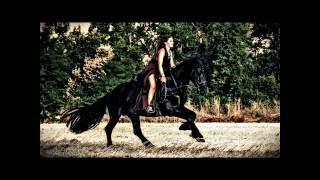 Brilliant & Wild Vocal Trance | [ Music Mix ] |