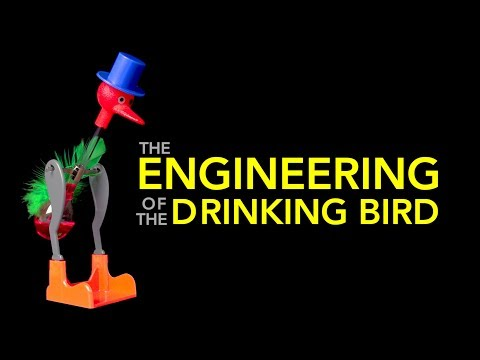 How the Famous Drinking Bird Toy Works
