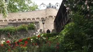 preview picture of video 'Eltville: Die vielen Namen der Rose'
