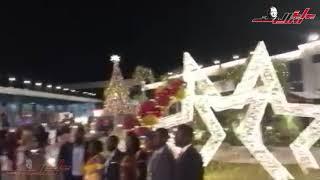 شباب العالم يحتفون بشجرة الكريسماس بـ«المنتدى».. بالصور التذكارية