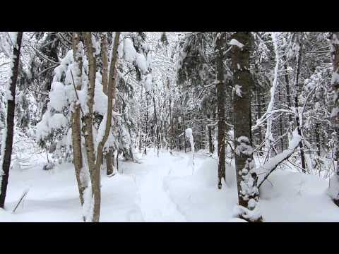 Música Chanson Pour Les Mois D'hiver