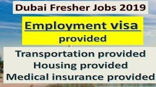 Fresher Jobs In Dubai 2019 | Jobs In Dubai For Fresher | Apply Now .