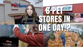 Going to SIX Pet Stores in ONE Day! | Pet Store Vlog W/ Taylor Nicole Dean + Emilee Rose
