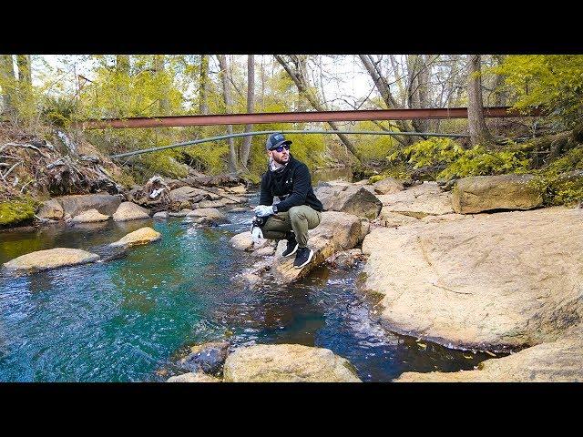 Found Urban Creek FULL of Fish!! (Micro) - Jiggin With Jordan