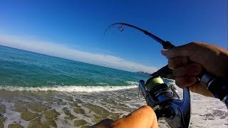 BIG FISH from the Beach on Popper ! (Corsica part 2)