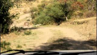 preview picture of video 'Off road driving in Karatau mountains, Kazakhstan'