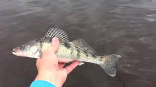 Запретные места для рыбалки на пестовском водохранилище