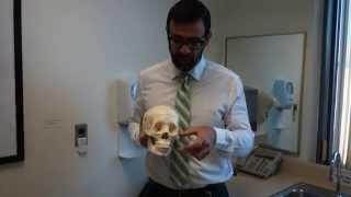 Measuring Facial Thirds - Potential VCA Donor