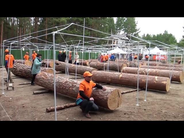В Савватеевке открылось «Лукоморье»
