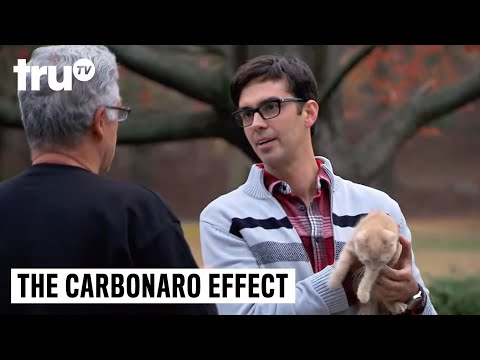 The Carbonaro Effect - Cat Goes Undercover in Dog Suit