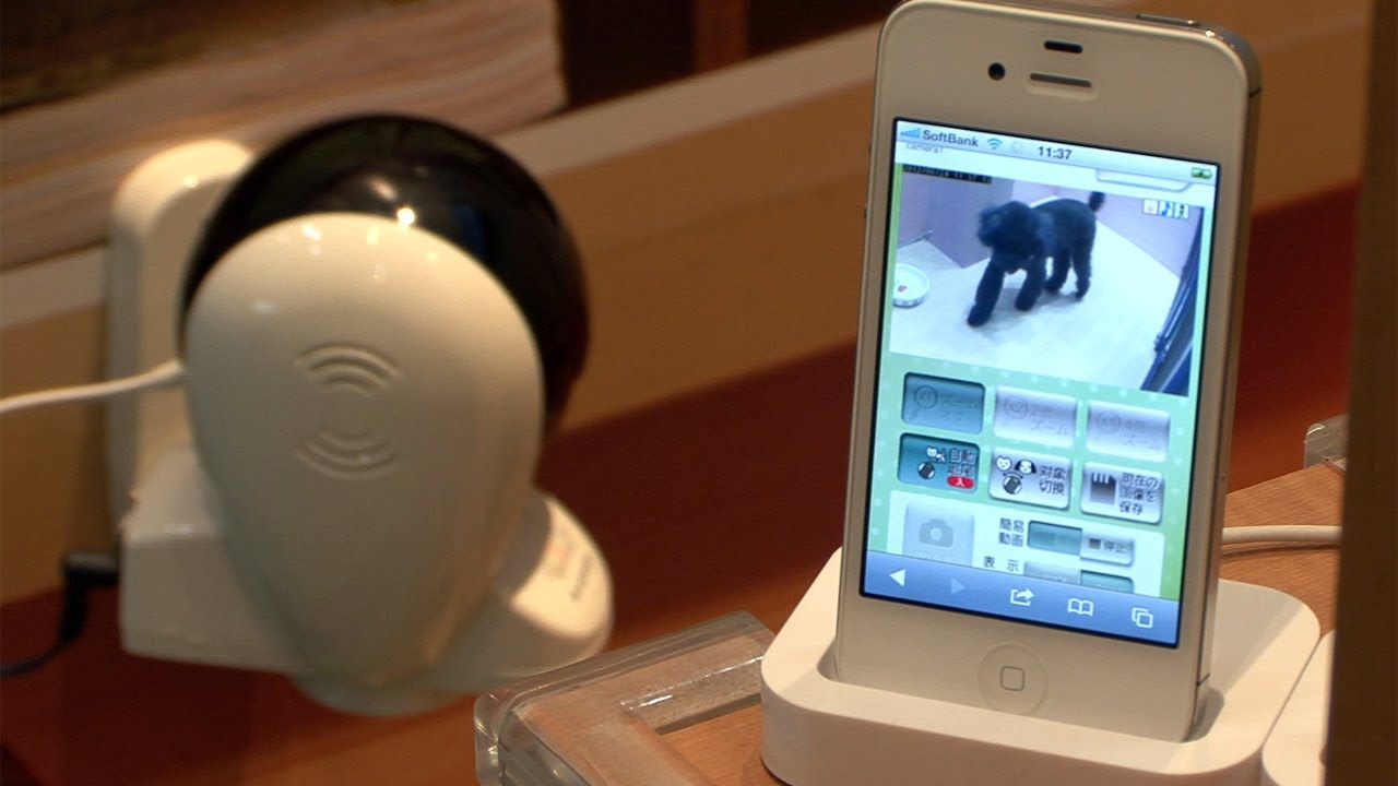 Pet-Tracking Security Camera Follows Fido's Antics Around The Room