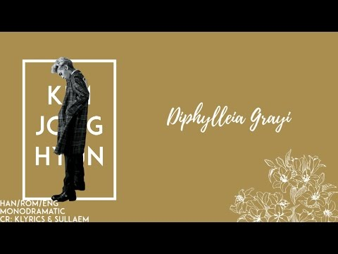 Jonghyun (종현) - Diphylleia Grayi (Skeleton Flower) (산하엽) (Han|Rom|Eng)