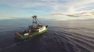 What Is Hawaii Longline Fishing? Captain Ben, F/V Cumberland Trail