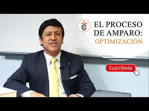 EL PROCESO DE AMPARO: OPTIMIZACIÓN - TC185
