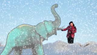 Jana Chládková - Bílý slon