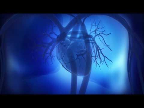 Senkung des Blutdrucks bei schwangeren