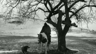 Fabrizio De Andrè - fiume sand creek (con testo)
